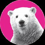 Ours polaire dansant sur l'affiche de FESTIMIXX